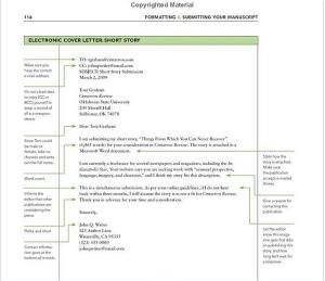 Journal manuscript submission cover letter Paisaje Indeleble